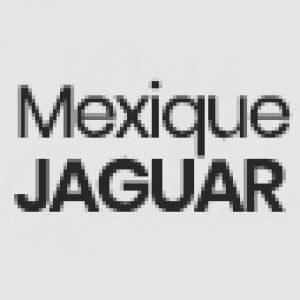 Cafe Mexique Jaguar